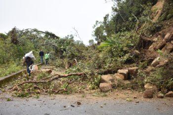 Lluvias causan deslizamientos en Sonsón.