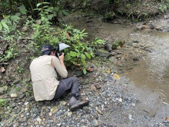 Proyecto de investigación creará guía de mariposas en el Oriente.