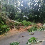 Derrumbe en la vía San Carlos - San Rafael.